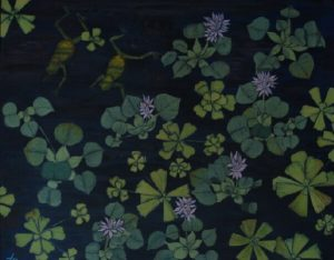 Water hyacinth and frogs acrylic on canvas 24x30