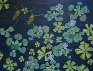 Water hyacinth and frogs2