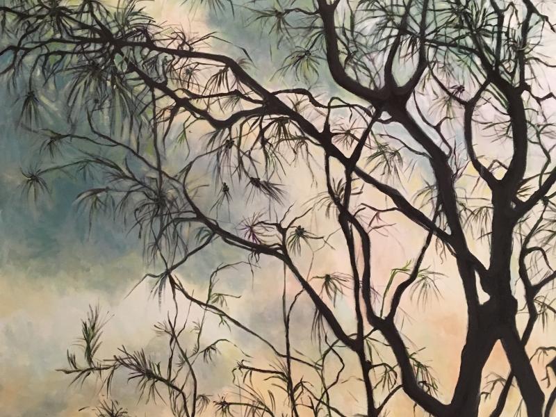 Casurina 1, acrylic on canvas, 102 x 77cm