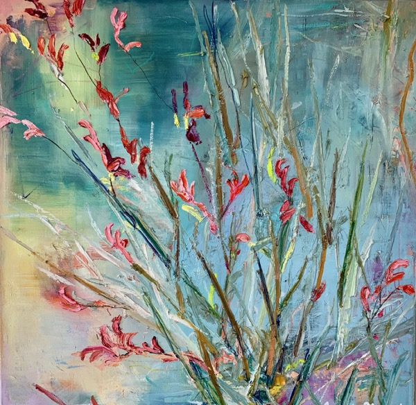 Kangaroo Paw, oil on linen, 64 x 64cm
