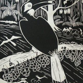 Lino print, hornbill 'bushy crested' (30x40)cm