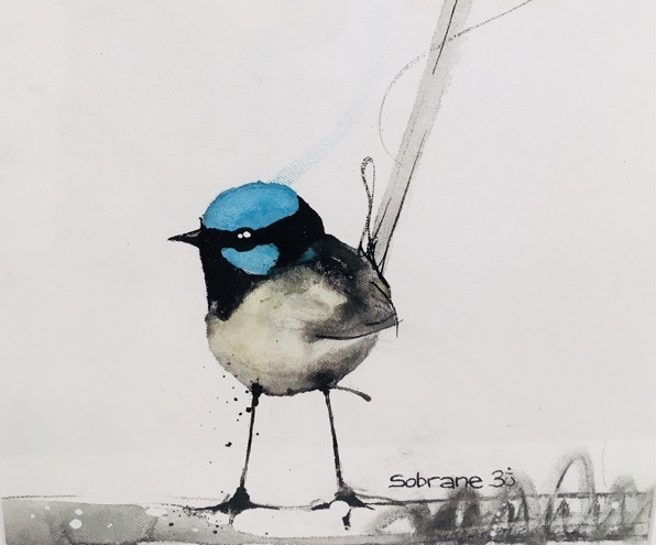 Superb fairy wren, mixed media on paper, 67 x 47cm (incl frame) copy
