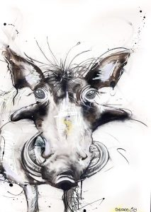 Warthog, mixed media on canvas, 70 x 50cm