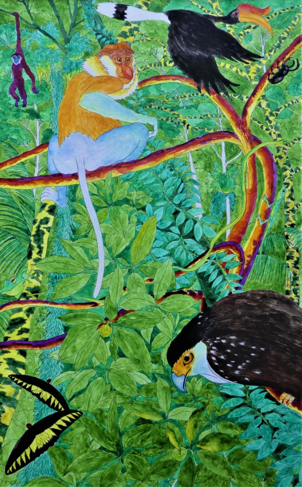 Bilit rainforest 9 ink and watercolour on board, 52 x 76cm copy