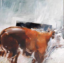 Bull oil on canvas 92 x 92cm