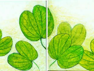 Green leaves 5 pastel on paper 25 x 9in