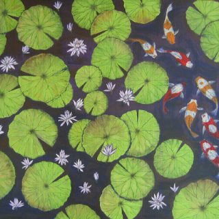 Waterliles & carps