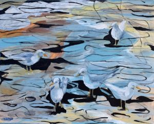 Morning with seagulls