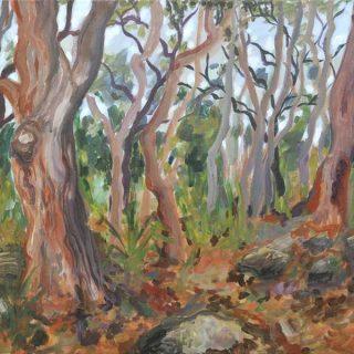 Berry island landscape acrylic on canvas, 90 x 60cm