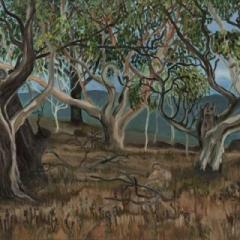 Jindabyne acrylic on canvas 91 x 61cm