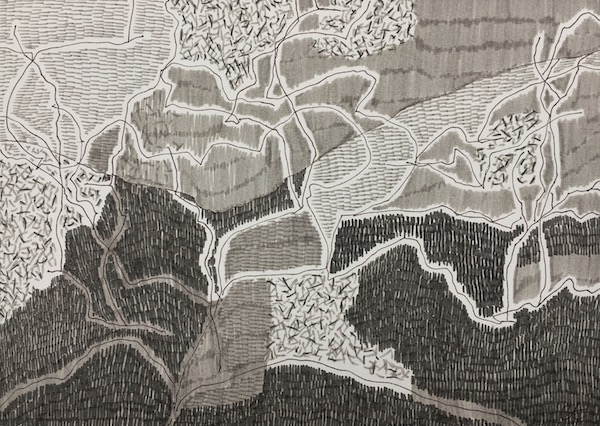 Angophora bullimah spur ink on paper, 21 x 29 7cm