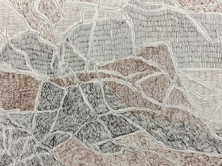 Bouddi undergrowth ink on paper, 21 x 29 7cm