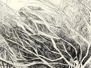 Brush work ink on paper, 21 x 29 7cm