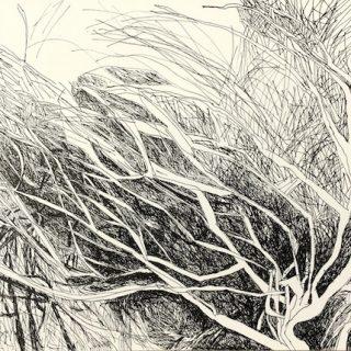 Brush Work, ink on paper, 21 x 29 7cm