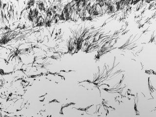 Coastal sand hill ink on paper, 21 x 33cm