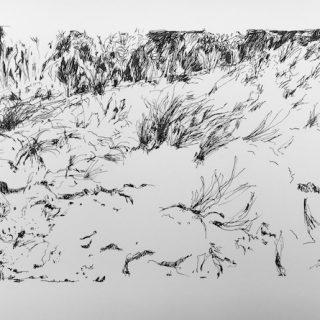 Coastal Sand Hill, ink on paper, 21 x 33cm