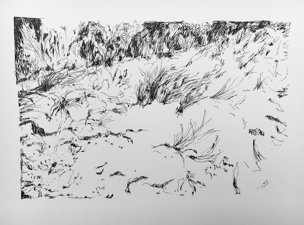 Coastal sand hill ink on paper, 21 x 33cm