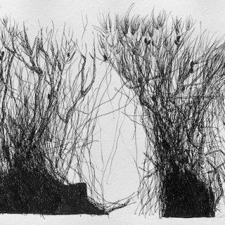 In Between, ink on paper, 24 x 36cm