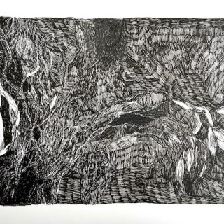 Into the Scrub, ink on paper, 24 x 33 cm