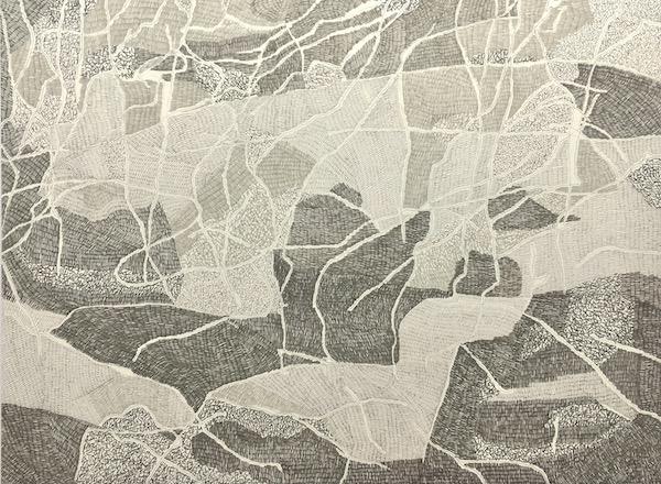 Mangroves - Pretty Beach ink on paper, 57 x 76cm
