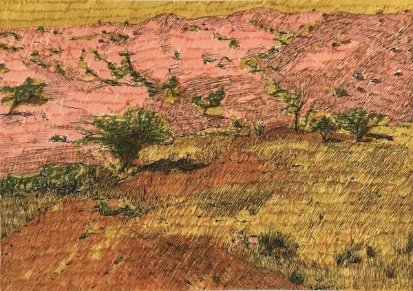 Mundi mundi plains 2 ink on paper, 21cm x 29 7cm