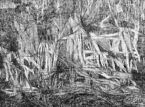 Second point trail 3 bouddi ink on paper, 57cm x 76cm