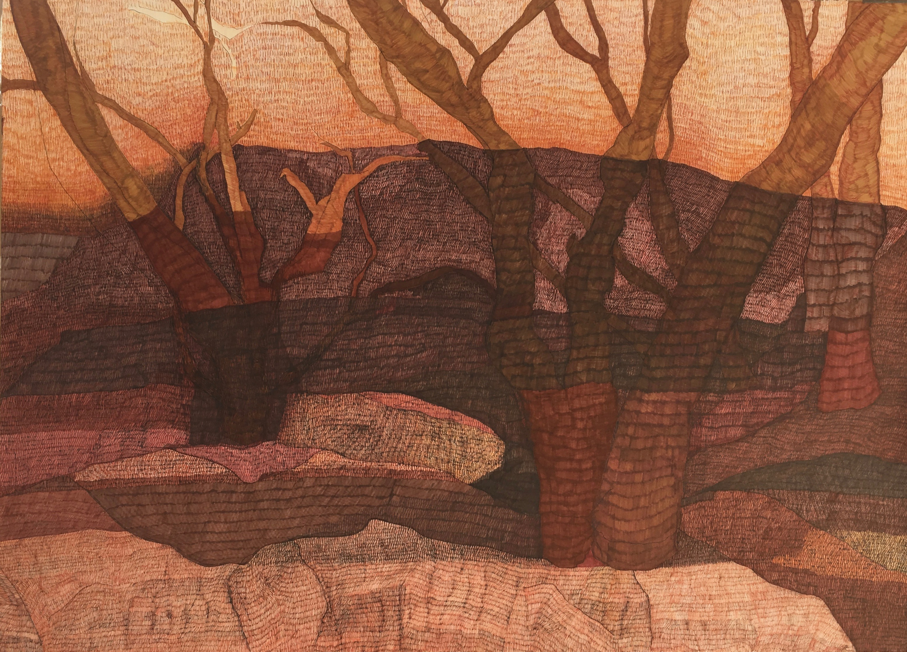 Shadows kings canyon ink on paper, 77cm x 107cm