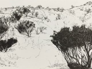 That drive through wa 1 ink on paper, 21 x 33cm