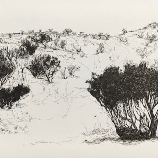 That Drive Through WA 1, ink on paper, 21 x 33cm