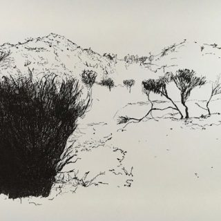 That Drive Through WA 2 ink on paper, 21 x 33cm