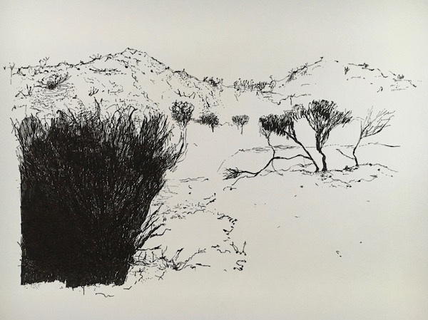 That drive through wa 2 ink on paper, 21 x 33cm
