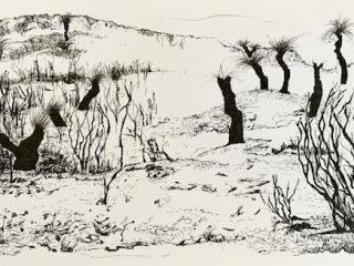That drive through wa 3 ink on paper, 21 x 33cm