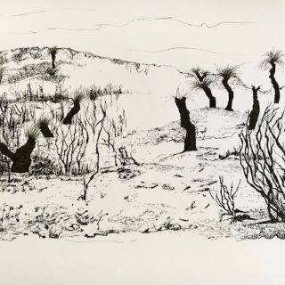 That Drive Through WA 3, ink on paper, 21 x 33cm