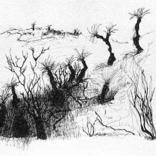 That Drive Through WA 4, ink on paper, 21 x 33cm