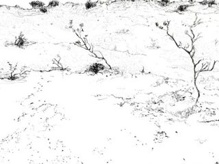 That drive through wa 7 ink on paper, 22 x 34cm