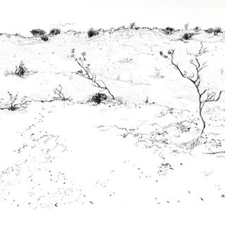 That drive through wa 7 ink on paper, 22 x 34cm