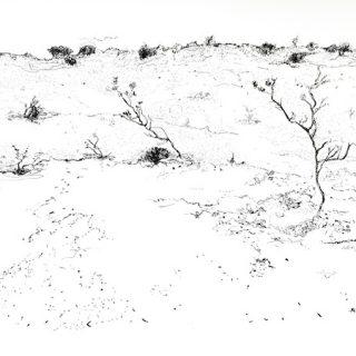 That Drive Through WA 7, ink on paper, 22 x 34cm