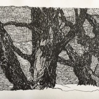 The lake trees ink on paper, 23 x 36cm