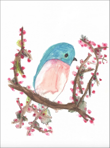 Spring time bird by mika selden, watercolour pencil on paper, 23 x 30cm