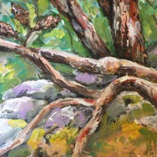 Blue mountains bush walk II, acrylic on canvas, 50 x 60cm