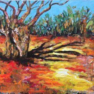 Boab Tree, acrylic on canvas, 61 x 76cm
