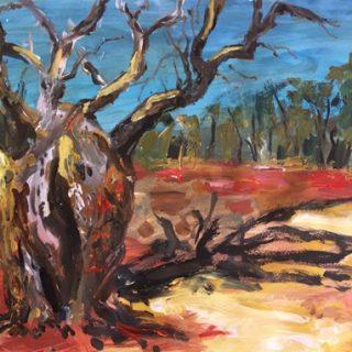 Boab Tree, acrylic on paper, 32 x 50cm