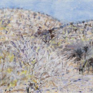 Veld, oil on canvas, 51 x 61cm