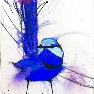 Splendid Blue Wren II, mixed media on canvas, 65 x 50cm