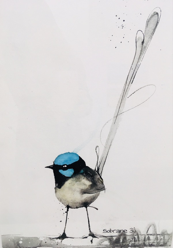 Superb Fairy Wren, mixed media on paper, 67 x 47cm (incl frame)