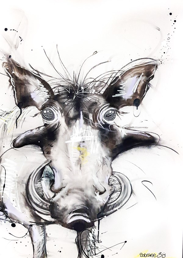Warthog, mixed media on canvas, 72 x 55cm